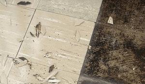 asbestos tile & mastic